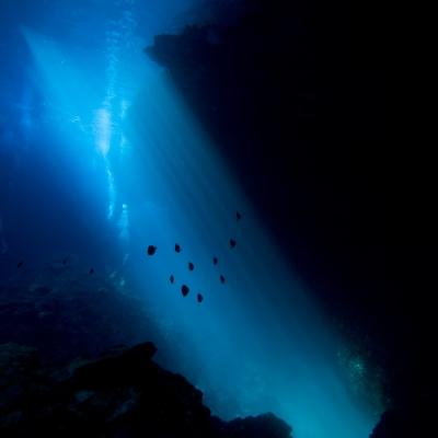 Blue Hole_ Vela Luca_Korcula_Hr-8217109